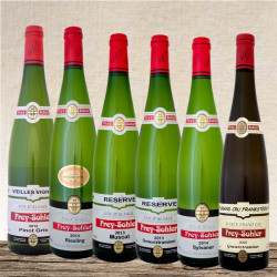 Tasting set wines of Alsace