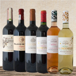 Tasting set wines of Bordeaux