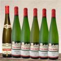 Tasting set wines of Alsace